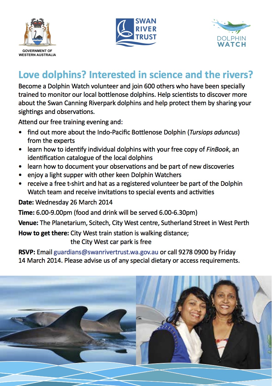Dolphin watch training flyer