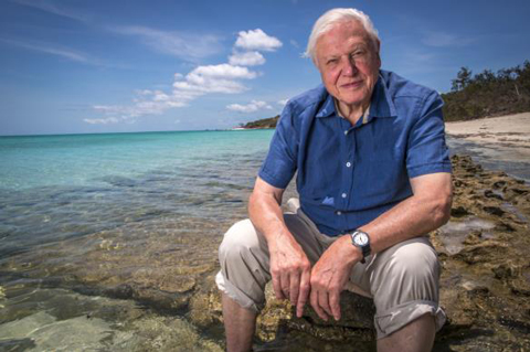 David Attenborough at Great Barrier Reef. Photo: www.dfat.gov.au, Wikimedia Commons