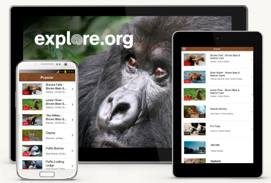 Explore Apps