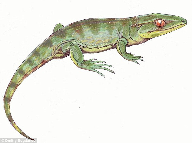 Gephyrostegus bohemicus - early lizard. Dmitry Bogdanov