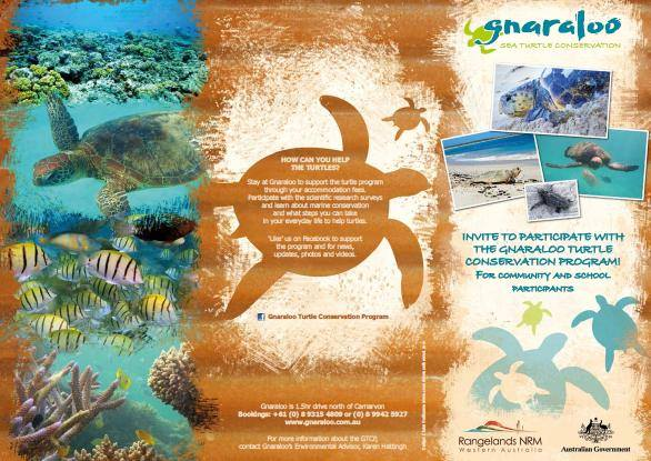 Gnaraloo turtle conservation program free presentations