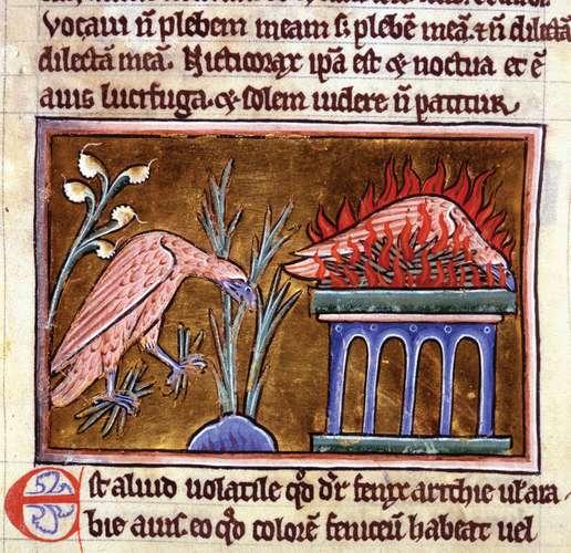 Phoenix vegetation flames bestiary Latin ashes. Image: Encyclopedia Britannica
