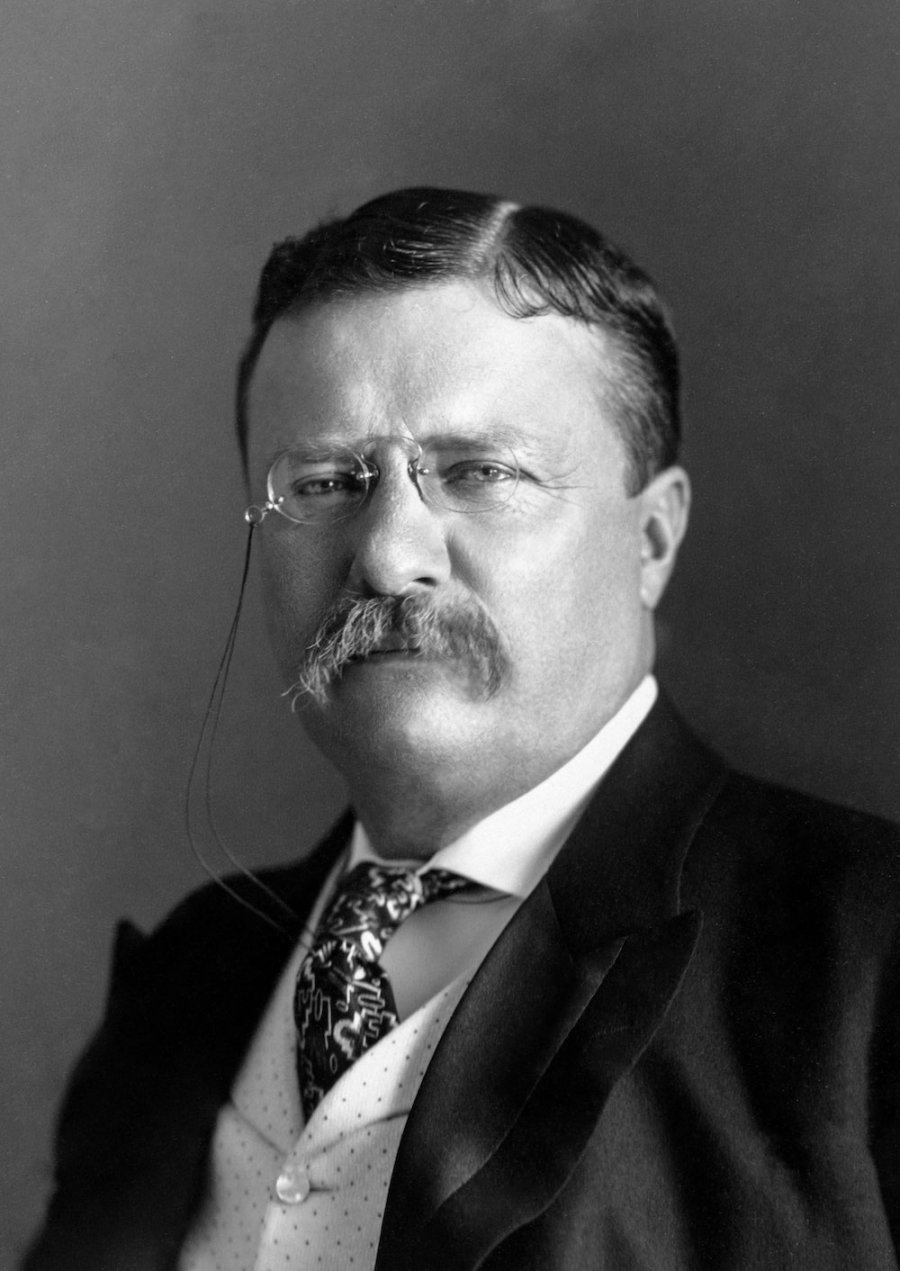 President Roosevelt Pach Bros. Photo: US Library of Congress, Wikimedia Commons