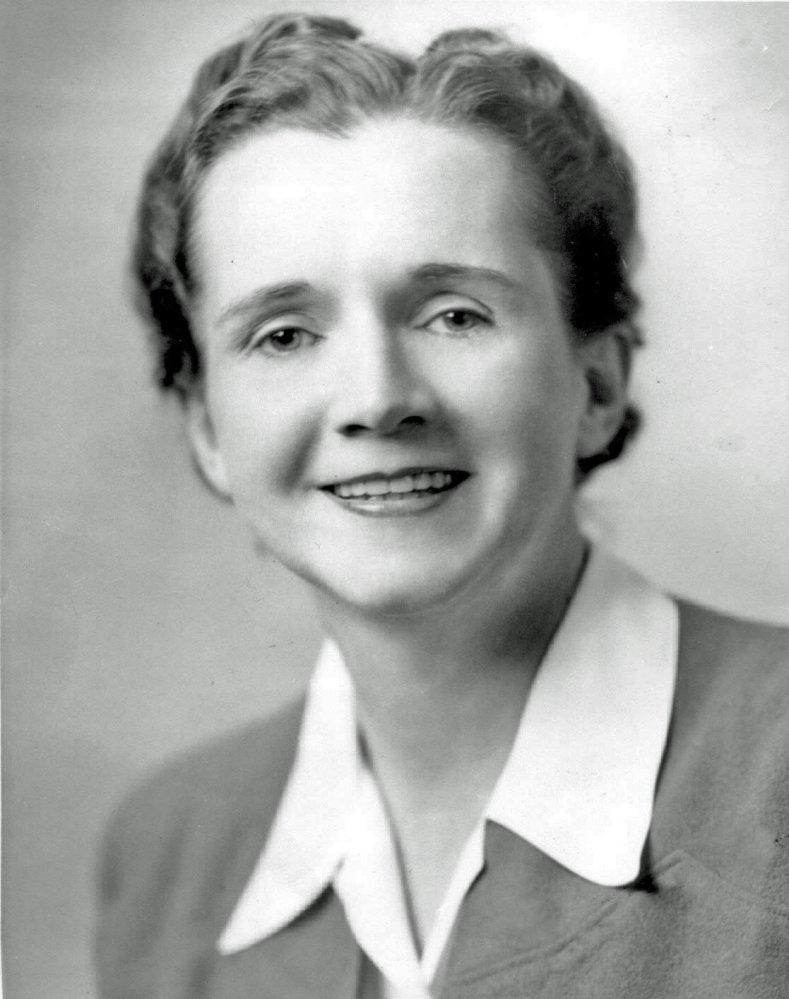 Rachel Carson. Photo: US Fish and Wildlife Service, Wikimedia Commons