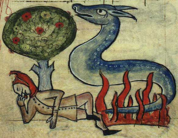 Salamander in fire, Fifth Century. Image: Wikimedia Commons