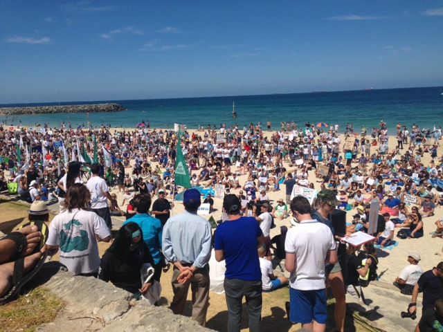 Protest against shark culling, Cottesloe Beach January 2014