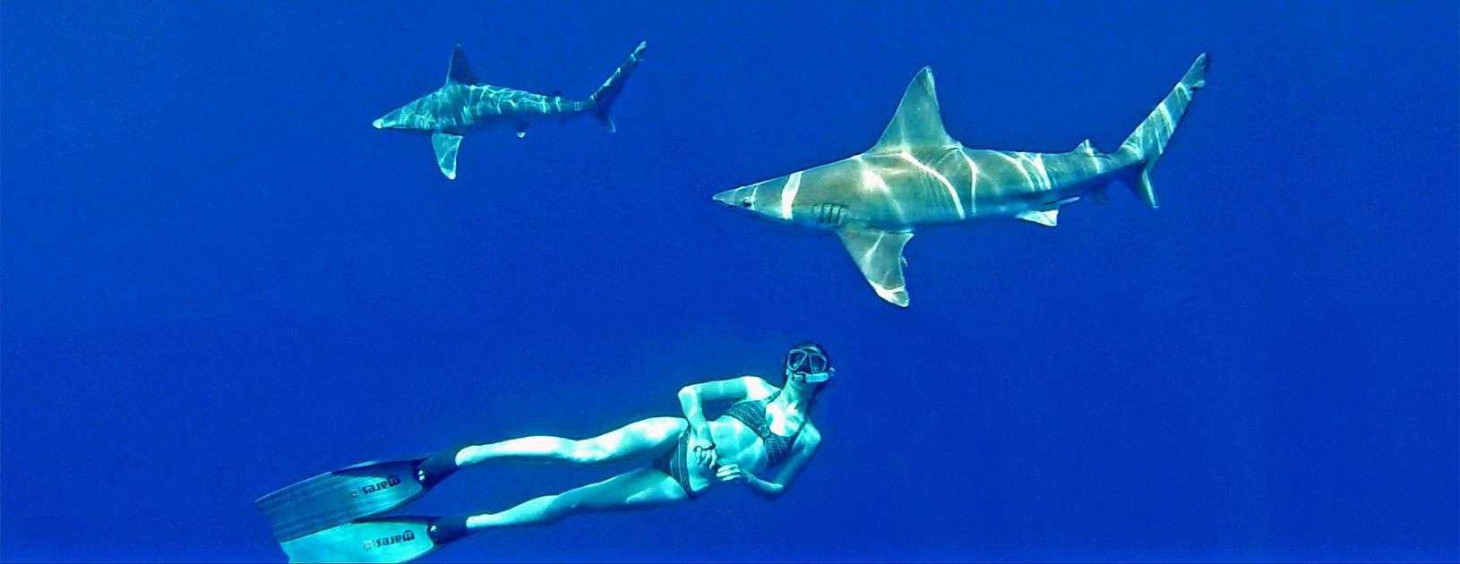 Laura Corbe swimming with sharks, Hawaii. Photo Juan Oliphant