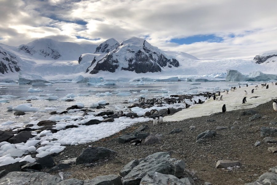 Vast amount of planet earths water is ice-bound as here in Antarctica. Photo Animal Ark
