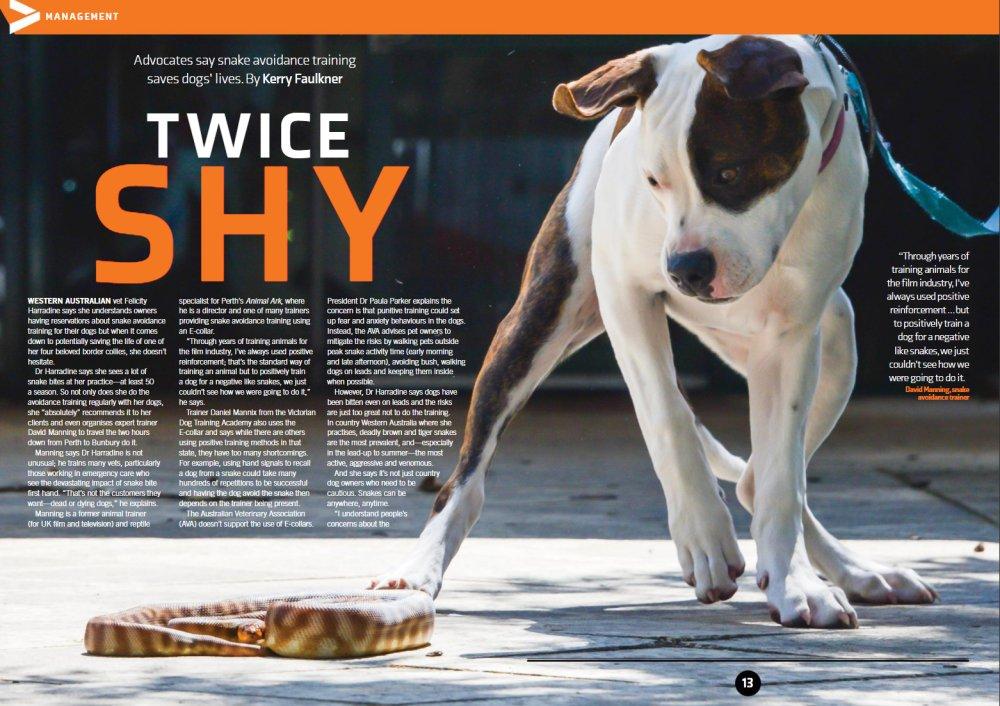 Vet Practice Magazine Nov 2017 article - Snake Avoidance Training for dogs