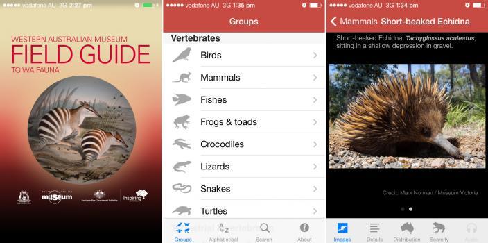WAM field guide to WA fauna. iPhone/iPad/android app
